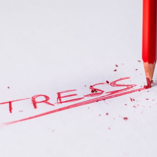 Helping children cope with stress during Covid-19 pandemic